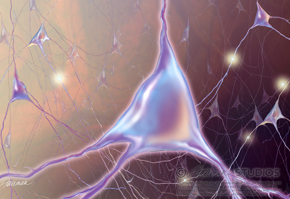 Neurons in 3D