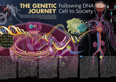 The Genetic Journey
