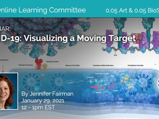 COVID-19: Visualizing a Moving Target by Jennifer Fairman for AMI Members